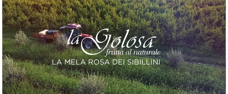 Video La Mela Rosa dei Monti Sibillini La Golosa - frutta al naturale