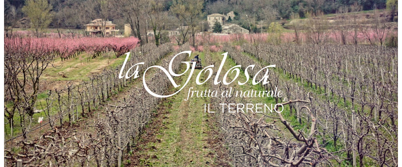 Video Il Terreno La Golosa - frutta al naturale